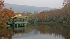 Madeiras no pavilhão da água Fotografia de Stock Royalty Free