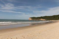 Madeiro海滩-负子蟾海滩, RN,巴西 库存图片