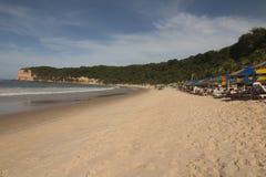 Madeiro海滩-负子蟾海滩, RN,巴西 免版税库存图片