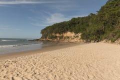Madeiro海滩-负子蟾海滩, RN,巴西 免版税库存照片