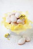 madeleine Foto de Stock Royalty Free