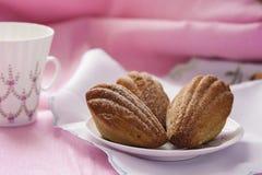 Madeleine avec le thé vert sur un fond rose images libres de droits