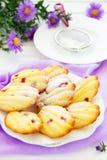 Madeleine cake Royalty Free Stock Image