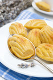 Madeleine cookies with lavender Royalty Free Stock Image