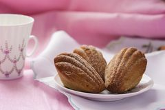 Madeleine with green tea on a pink background. Gentle Madeleine with green tea on a pink background Royalty Free Stock Images