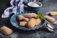 Madeleine - pequeñas tortas francesas tradicionales fotos de archivo libres de regalías
