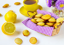 Madeleine's cookies Royalty Free Stock Photography