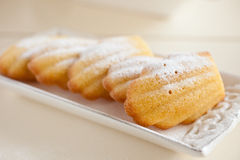 Madeleines Royalty Free Stock Photo