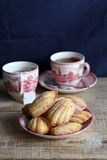 Madeleines with cup of tea Royalty Free Stock Photography