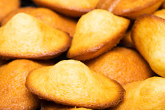 Madeleines Stock Photo