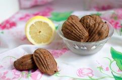 Madeleines do limão do chocolate Fotos de Stock