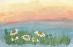 Madeliefjes bij zonsondergang stock illustratie
