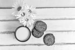 Madeliefjes en koekjes en melk Stock Afbeeldingen