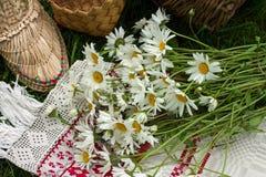 madeliefjes van boeket de wilde bloemen Stock Foto's