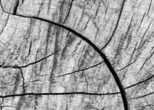 Madera agrietada para el fondo y el diseño Fotografía de archivo libre de regalías