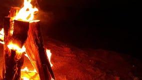 Madera ardiente del fuego del campo en la arena en la noche almacen de metraje de vídeo