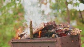 Madera ardiente en el primer de la parrilla almacen de metraje de vídeo