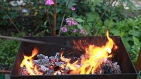Madera ardiente en un brasero Fuego, llamas Parrilla o barbacoa almacen de metraje de vídeo
