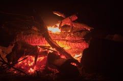 Madera ardiente en un fuego fotografía de archivo