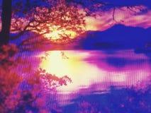 Madera asombrosa nicepic del hijo del agua de la belleza imagenes de archivo