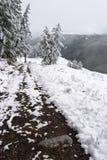 Madera, camino y nieve blancos. fotografía de archivo