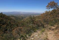 Madera Canyon View Royalty Free Stock Image
