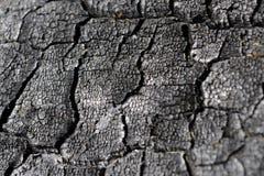 Madera carbonizada con las grietas imagenes de archivo