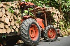 Madera cargada en el bosque, natural de madera fresco del camión aserrado imagen de archivo