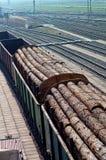 Madera, cargo, tren, registros, carro, clasificación, registrando, madera de construcción Foto de archivo libre de regalías