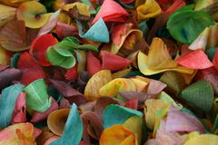 Madera coloreada Foto de archivo libre de regalías
