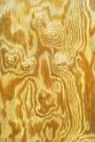 Madera contrachapada Imagen de archivo