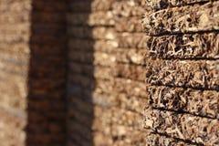Madera contrachapada Foto de archivo libre de regalías