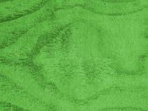 Madera contrachapada verde Foto de archivo