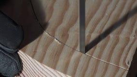 Madera-corte usando una sierra de cinta almacen de video