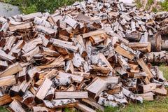 madera de abedul tajada en hierba fotografía de archivo