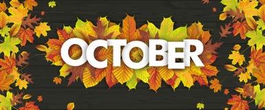 Madera de Autumn Foliage Fall Header October stock de ilustración