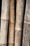 Madera de bambú de la cerca - textura Imagenes de archivo