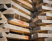Madera de construcción apilada en el aire abierto y cubierta con el web de araña Imágenes de archivo libres de regalías