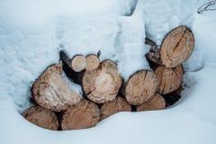 Madera de construcción de la pila del registro de la nieve en invierno Woodpile del pino Fotos de archivo