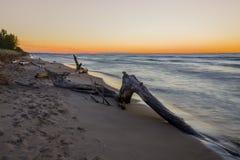 Madera de deriva en una playa después de la puesta del sol - Canadá del lago Hurón Imagen de archivo