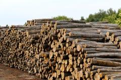 Madera de la madera de construcción almacenada en una tierra Fotografía de archivo libre de regalías