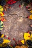 Madera de la naturaleza de los regalos del fondo del otoño Fotografía de archivo