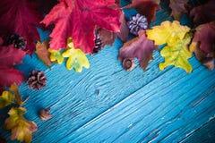 Madera de la naturaleza de las hojas de los regalos del fondo del otoño Foto de archivo libre de regalías
