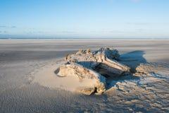 Madera de la playa Fotografía de archivo