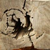 Madera de la ruina Imagenes de archivo
