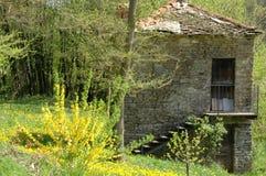 Madera de Langhe con poco cortijo Foto de archivo libre de regalías