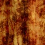 Madera del Burl Foto de archivo libre de regalías