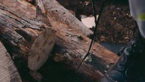 Madera del corte de la sierra con la sierra de la mano almacen de metraje de vídeo