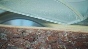 Madera del corte en una fábrica de madera Ciérrese encima de los clips de la madera del sawing Una serrería es una instalación do metrajes
