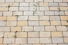 Madera del edificio del cemento del ladrillo del ladrillo de la corteza de árbol de la composición del fondo, Imagen de archivo
